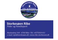 Storkesøen Ribe
